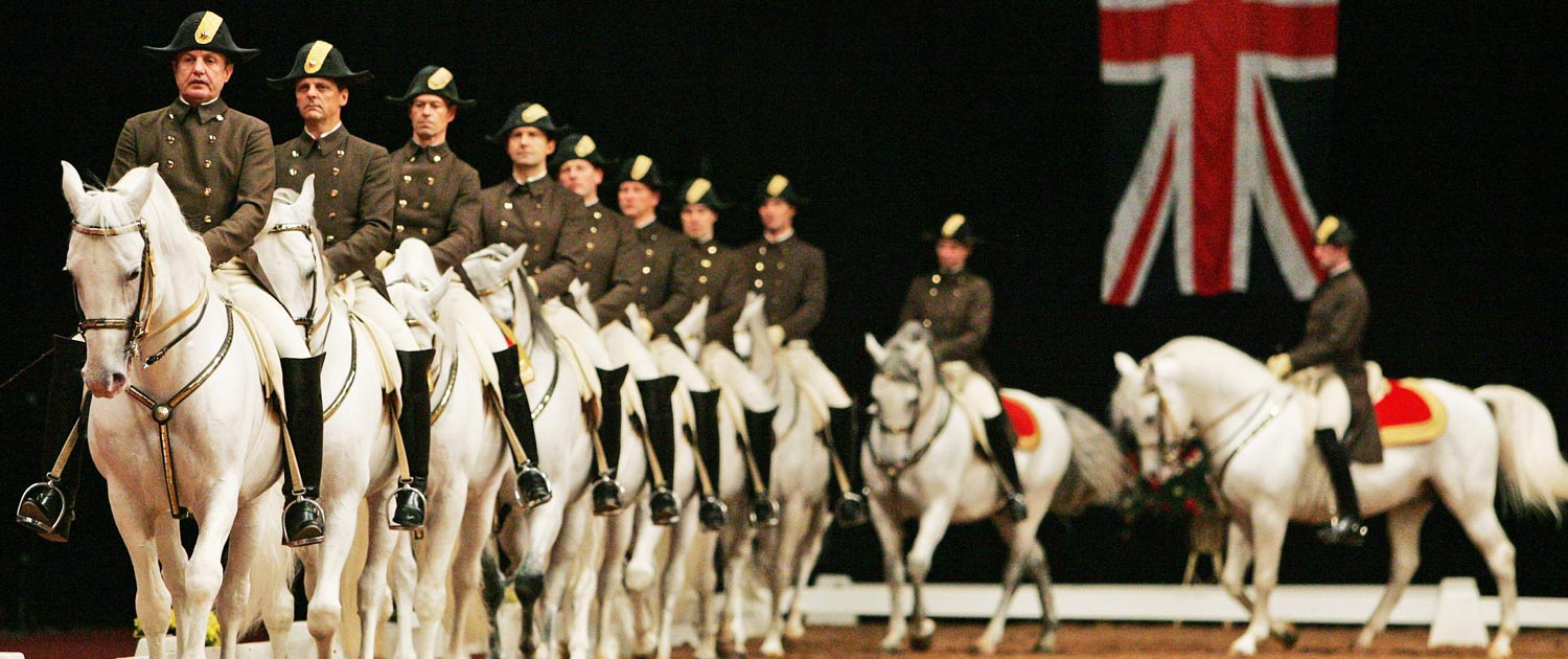 Sport - horse shows