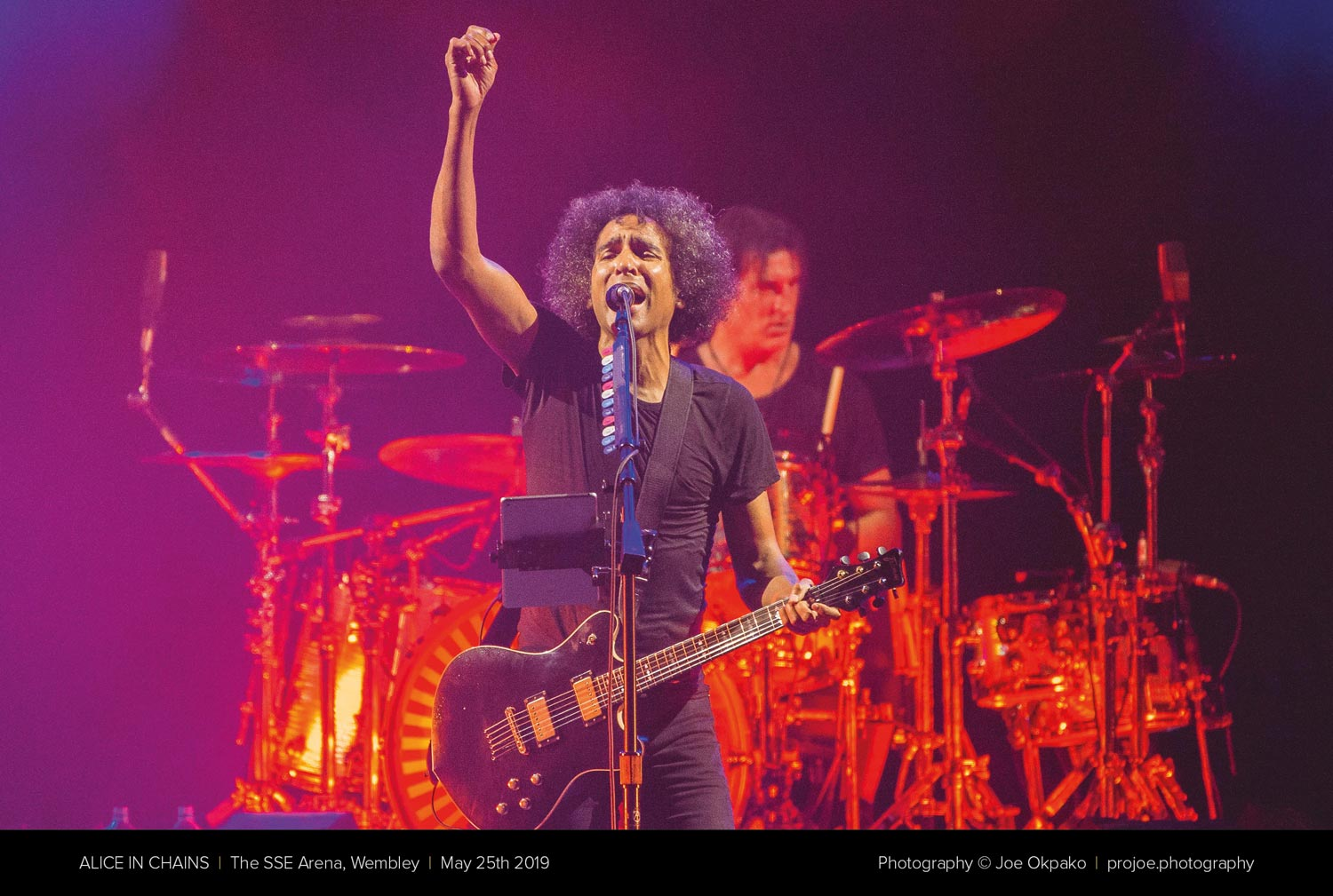 Alice in chains 2019